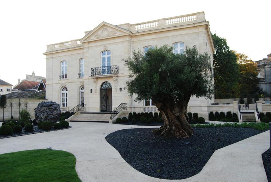 Aménagement arbre olivier la grande maison Joel Robuchon bordeaux - pépinière La Palmeraie