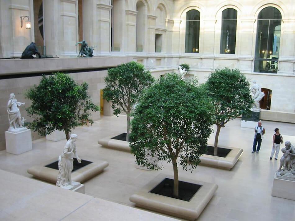 Aménagement Musée du Louvre paysagiste Savi - La Palmeraie