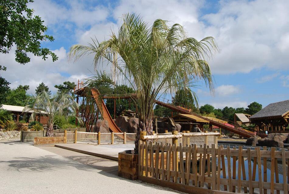Aménagement palmier parc la coccinelle gujan mestras - La Palmeraie